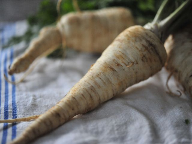 Parsley root1 790 xxx