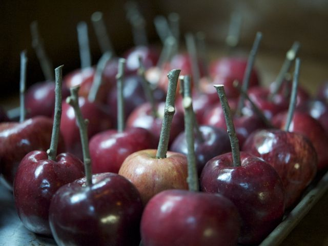 Apples-with-sticks-790-xxx