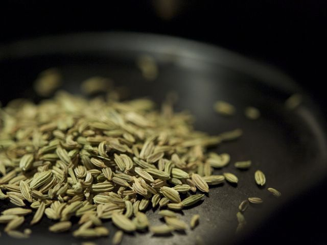 Fennel-seeds-790-xxx