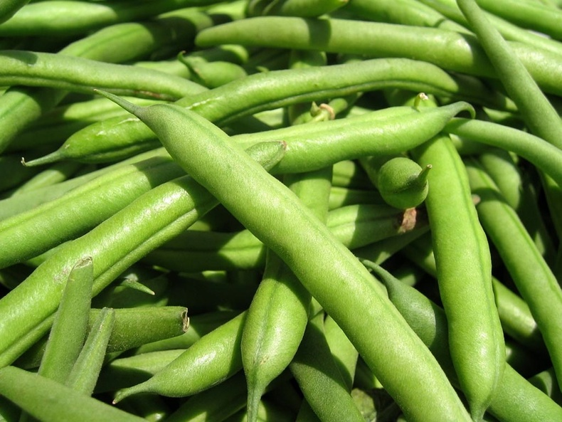 Greenbeans-790-xxx