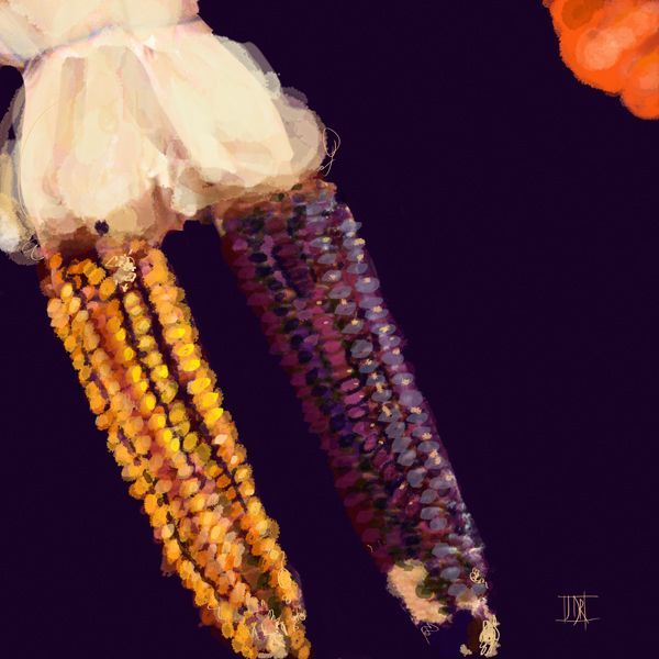 Dried corn 790 xxx